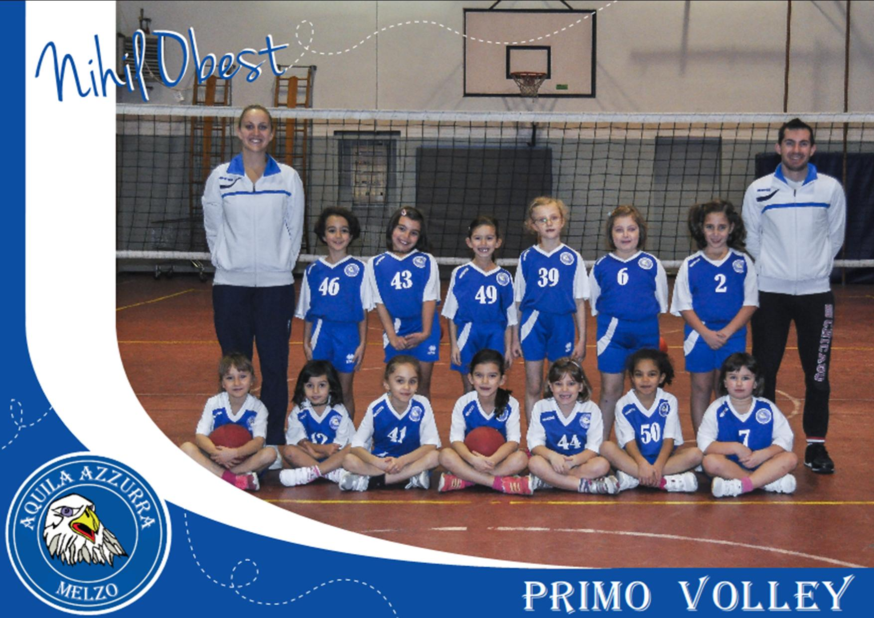 PRIMO VOLLEY 2015