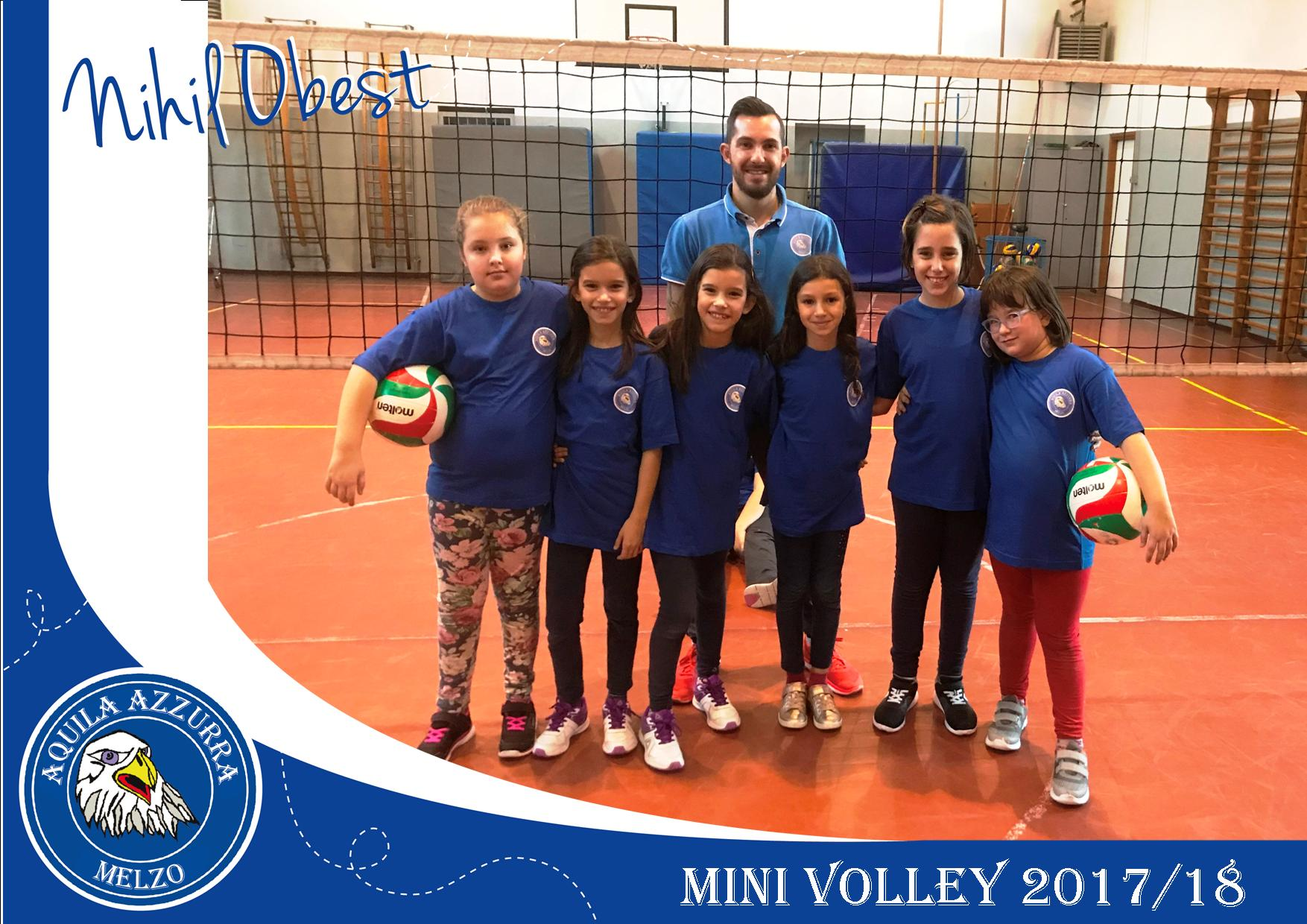 mini-volley